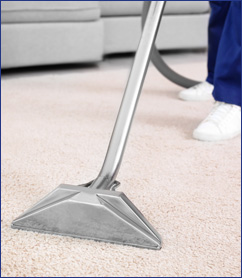 Carpet & Upholstery Cleaning Waterford, MI | American Quality Cleaning - professional-carpet-stain-cleaning